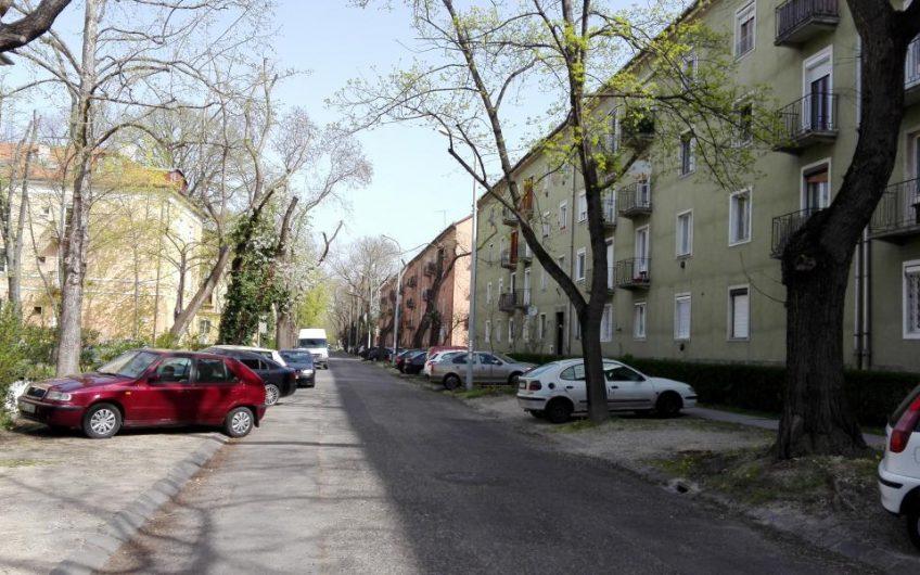 XI. Karcag utcai, parkra néző garzon eladó