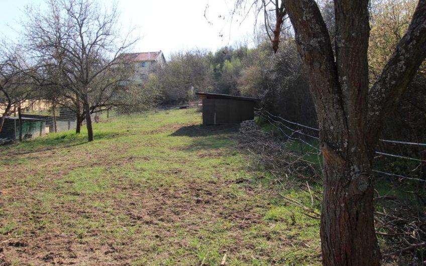 Lótartásra, gazdálkodásra, alkalmas külterületi telek Budakalászon eladó!